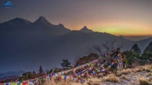 Ghorepani Poonhill Trek- The Best Short Trek in Annapurna Region